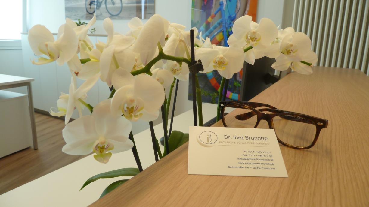 Eröffnung der Privaten Augenarztpraxis Dr. Brunotte in Hannover